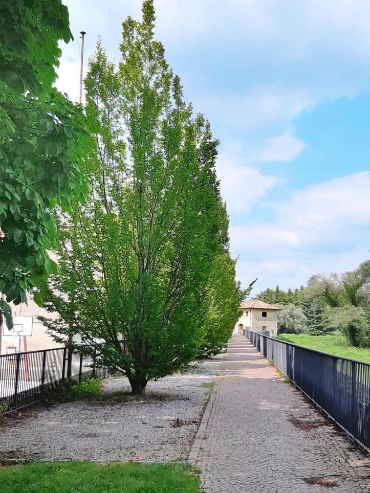 Gradisca d'Isonzo - 32-01