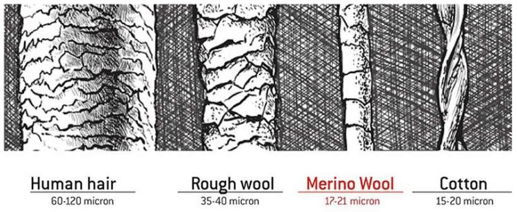 Merino Wool Thickness