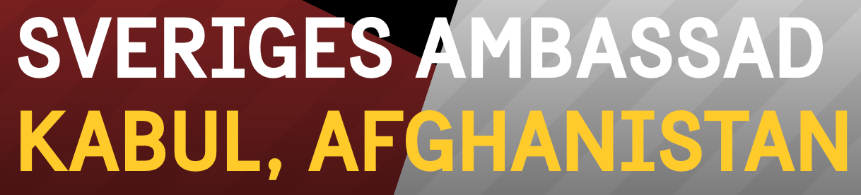 Vem/vilka är det som har kontakt med Afghanistans regering om det folkrättsliga faktum att ett land ska ta emot sina egna medborgare som inte getts rätt att uppehålla sig i Sverige: den svenska regeringen eller svenska aktivistnätverk?