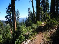 Red Star Ridge trail, looking towards Tahoe