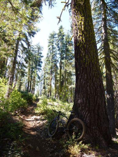 Red Star Ridge Trail