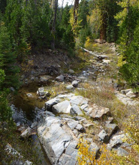 Filtering spot at Cedar Creek