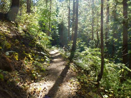 North Yuba Trail starting out from Downieville