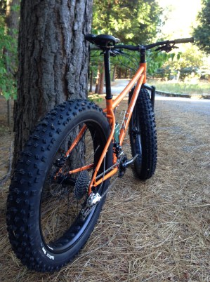 Number 21, 3rd fatbike