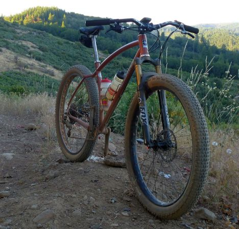 firstride-chickhawk-front