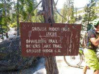 Grouse Ridge Trail