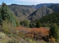 View into Clear Creek Canyon