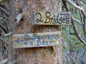 It should be called 5 bridges and no beavers or bears