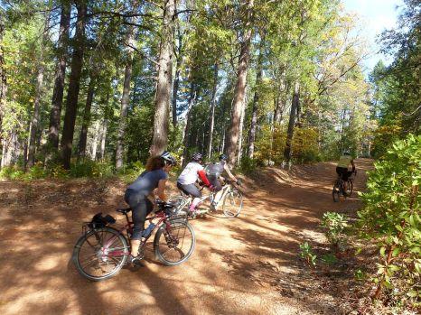 riders-leaves1