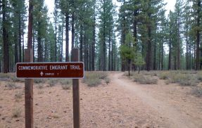 Emigrant Trail, snow starting to fall