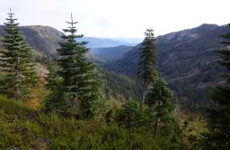 View down from the saddle before A-Tree.