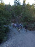 The lead pack