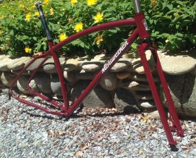 Adam's finished frame