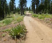 PCT on left, my route on right