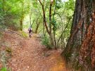 tourdetrash-codfish-trail
