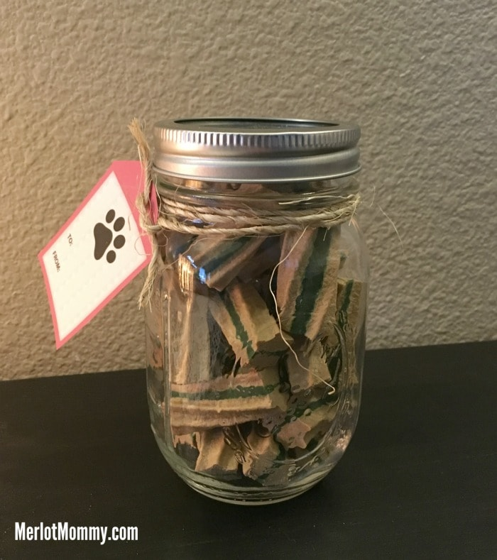 DIY Mason Treat Jar for Pets
