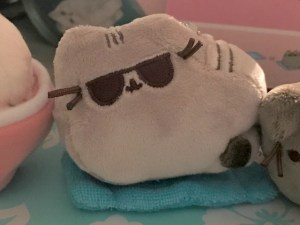 Pusheen the cat in Mermaidboxes
