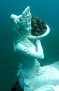 The Coral Reef Mermaid in Jemeluk Bay