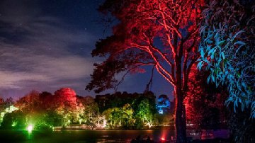 Festival of Light at Mount Stewart Nov 20-29 2015