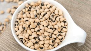 Black-Eyed-Peas, Bodi, Lobia