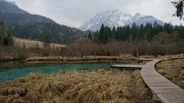 Sava Spring 1