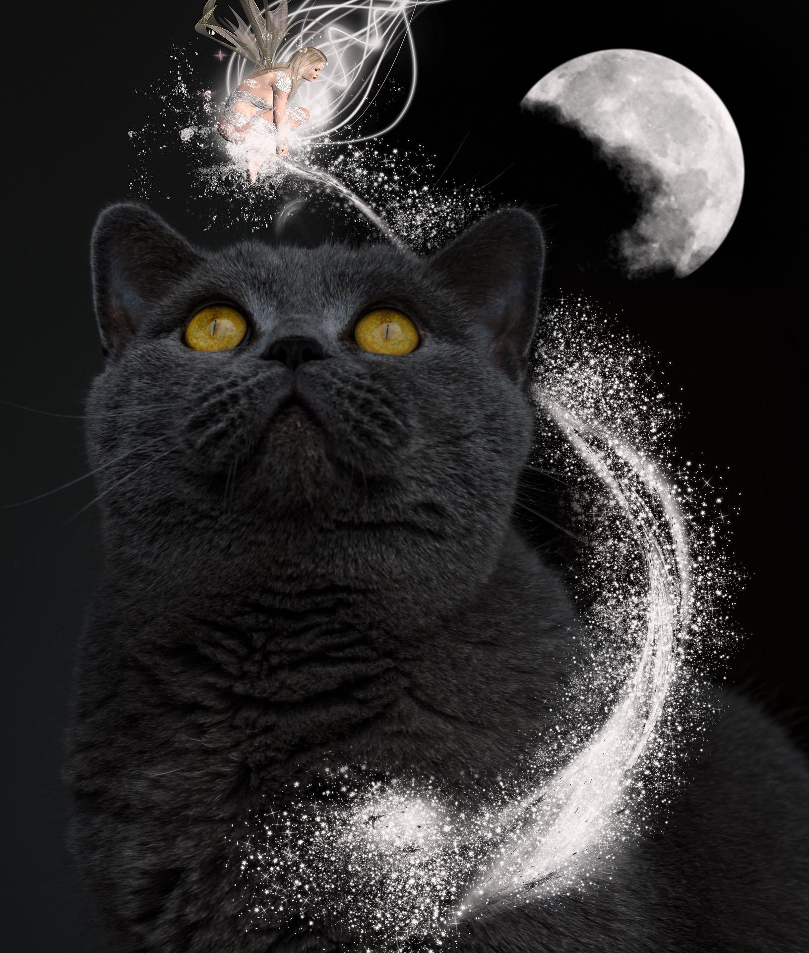 wishing you a magickal full moon