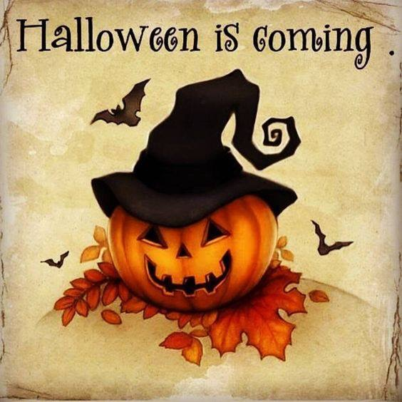 HALLOWEEN IS ALMOST HERE MY WITCHES!!!