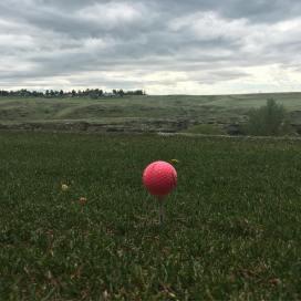 favorite golf ball