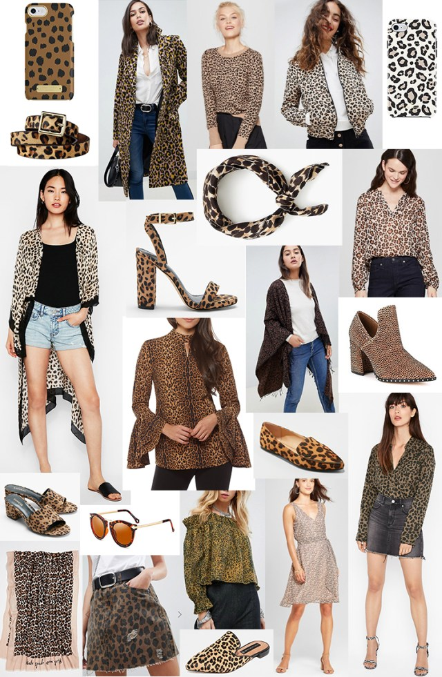 leopard print shopping guide