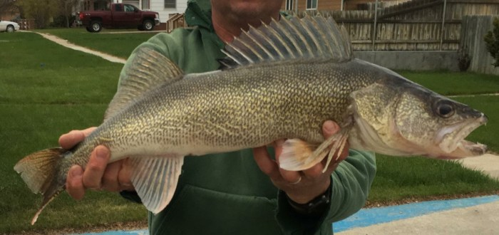 Fishing for Walleye at Merritt
