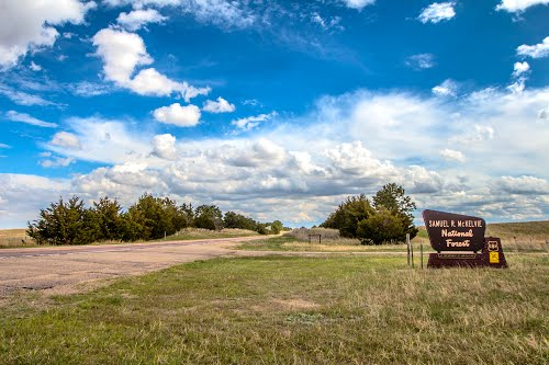 Merritt Reservoir Nearby Attractions - McKelvie Forest