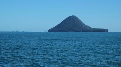 Moutohora_Island_from_southeast