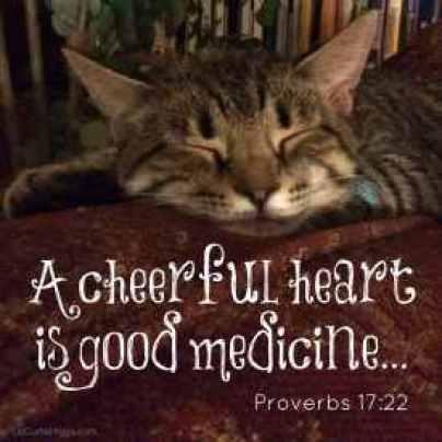 A cheerful heart is Good Medicine Proverbs-17-22