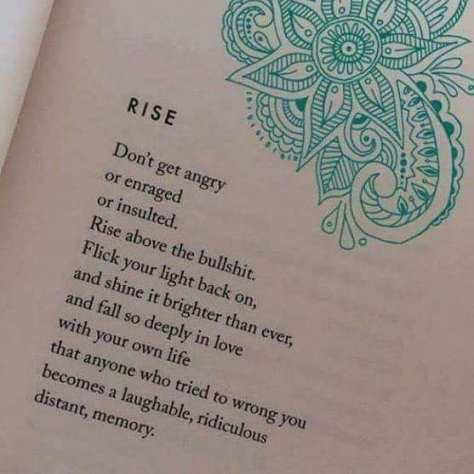 RISE Don't get angry or enraged or insulted. Rise above the bullshit
