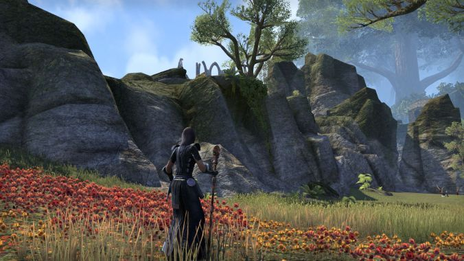 I love how in ESO, mobs aren't always placed randomly. You can often see tigers enjoying a nice view.