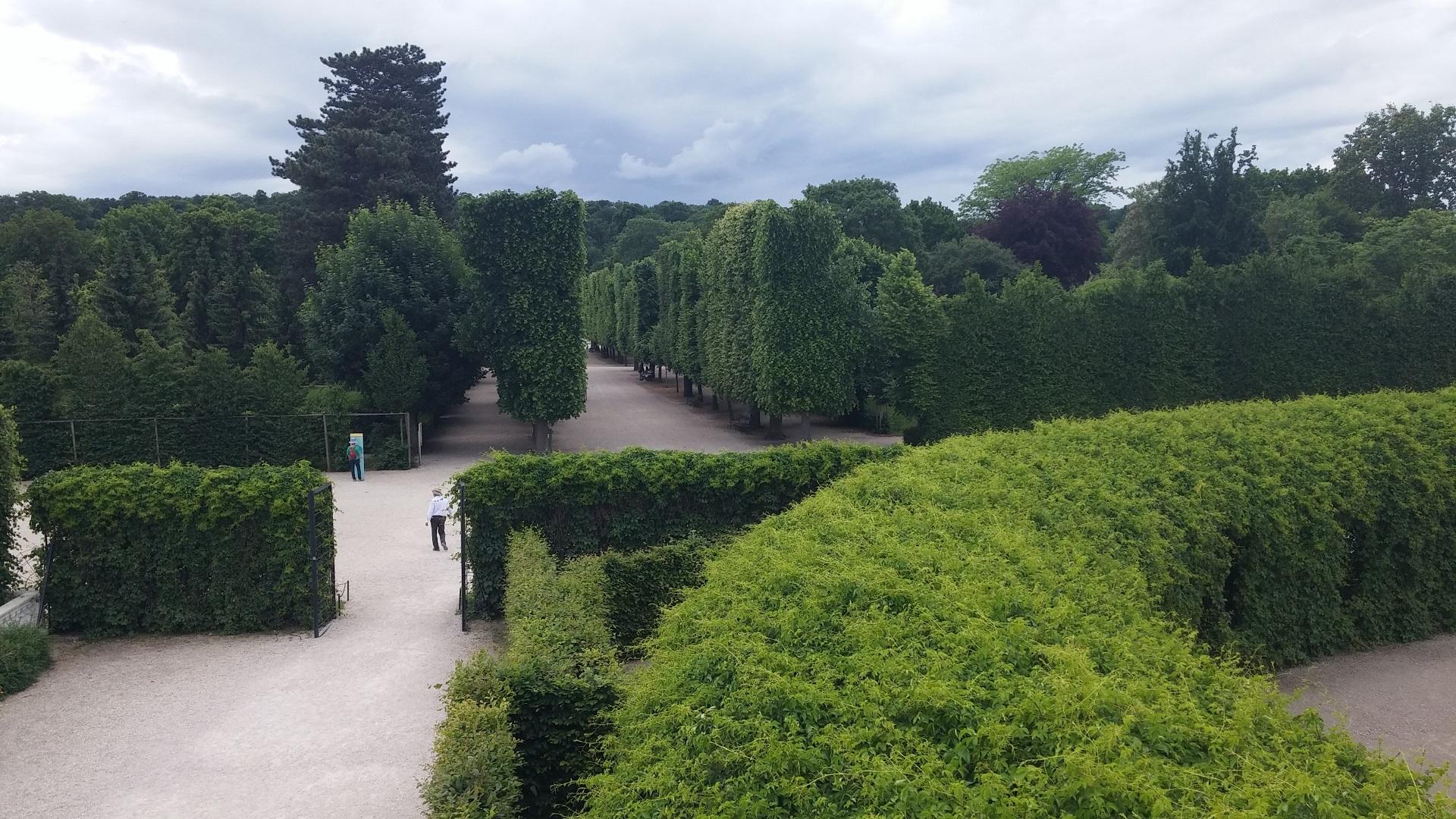 Schönbrunn castle garden