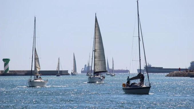 voiliers arrivant au port