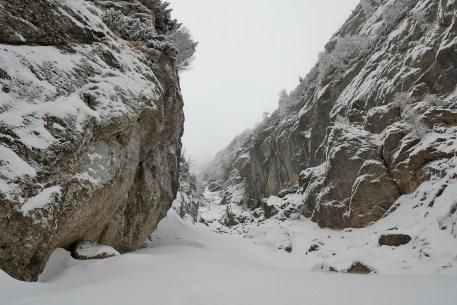 Valea Hornului 2017 (5)