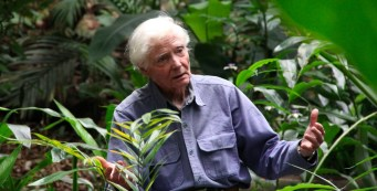 Merwin Conservancy Featured in The Honolulu Star Advertiser
