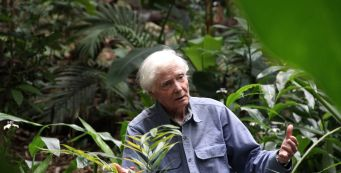 The Merwin Conservancy Partners with National Tropical Botanical Garden