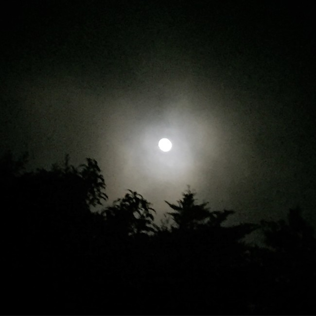 August 2015 Full Moon on Maui by Sara Tekula