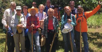 "Kaunoa Senior Center Volunteers Have ""Civic Adventure"" in the Merwin Palm Forest"
