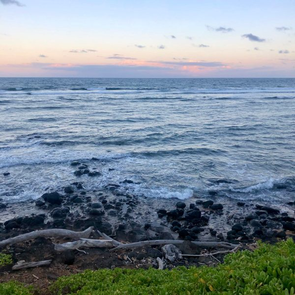 Erin Medeiros - In Good Company - Kauai