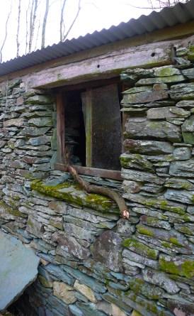 Back window of the Merz Barn broken by a flying branch