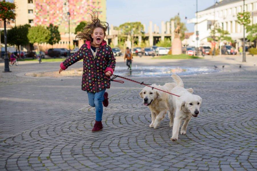 Copiii care participă la programul Pedibus, însoţiţi de câini până la şcoală