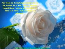 POZE IMAGINI SMS DE DRAGOSTE SI IUBIRE (75)