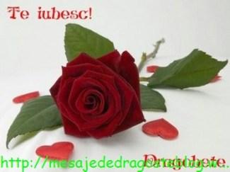 POZE IMAGINI SMS DE DRAGOSTE SI IUBIRE (79)