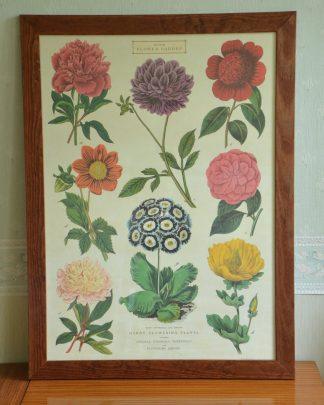 """Affiche """"British flower garden"""" représentant plusieurs sortent de fleurs de jardin anglais. Imprimé en Corée sur du papier italien et acheté à New-York! Ce produit a été imprimé en 2009."""