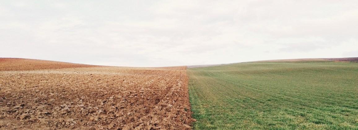Soil moisture