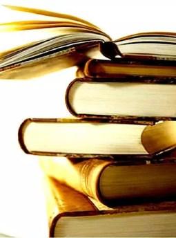 Mon Blog est un roman